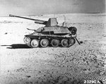 SdKfz 138-139 Marder III with Russian 7.62cm anti-tank gun abandoned in North Africa, 1943.