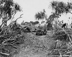 A US Marine forward base nestled into the few pieces of foliage left on the island, Iwo Jima, Mar 10, 1945