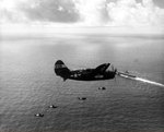 SB2C Helldiver of Bombing Squadron VB-86 approaching the carrier Wasp (Essex-class) near Japan, 1945. Note the white radar pod under the wing.
