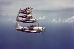 A flight of Douglas SBD Dauntless scout bombers over the Caribbean, 1944. Good view of the two-tone gray and white scheme widely used in the Atlantic Command.