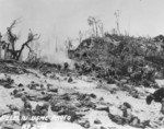 Men of the US 1st Marine Division fighting just beyond White Beach, Peleliu, 15 Sep 1944, photo 2 of 2