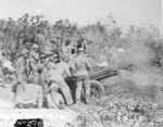 USMC 75-mm pack howitzer and crew, Peleliu, Palau Islands, Sep 1944