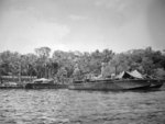 PT-183 and PT-180, Elco 80-footers of Motor Torpedo Boat Squadron 11 (MTBRon 11) at the Rendova PT Boat base on Lumbari Island in the Solomon Islands, 1944