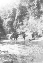 Members of US 5332nd Brigade (Provisional) crossing a stream, Burma, 17 Jan 1945