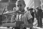 Boy with caged canary in ruins, Warsaw, Poland, Sep 1939, photo 2 of 2