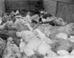 Victims of the death train that traveled from Buchenwald Concentration Camp to Dachau Concentration Camp during Apr 1945; photo taken at Dachau, Germany in late Apr or early May 1945
