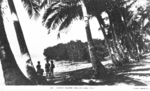 Postcard featuring coast of Dalici Gau, Fiji, 1940s