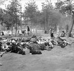 Women prisoners at the Bergen-Belsen Concentration Camp preparing food in the open air with scores of rotting corpses all around them, 17 Apr 1945 (food provided by the British). Photo 2 of 3.