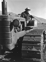 Benji Iguchi on a tractor in the agricultural fields at the Manzanar Relocation Center for deported Japanese-Americans, Inyo County, California, United States, 1943.