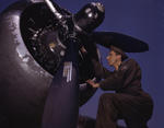 The engine of an A-20 Havoc aircraft being serviced, Langley Field, Virginia, United States, Jul 1942