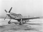 P-51D Mustang fighter resting at an airfield, date unknown