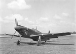 A-36 Apache ground attack aircraft, which was based on the P-51 Mustang fighter, date unknown