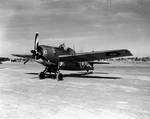 British Martlet II (Wildcat) fighter at La Senia airbase, Oran, Algeria, 14 Dec 1942, photo 1 of 2