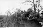 Camouflaged German Hornisse/Nashorn tank destroyer near Nettuno, Italy, Mar 1944, photo 2 of 2