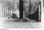 German PaK 36 fighting in France, 1940