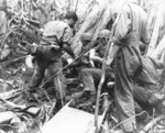 Litter bearers of the Medical Battalion of US 25th Division giving first aid to two men wounded by grenades, Guadalcanal, 10 Jan 1943