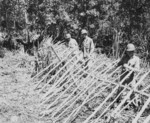 Makeshift defensive structure built by US Marines due to barbed wire shortage, Guadalcanal, Solomon Islands, 1942