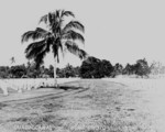 US military cemetery, Guadalcanal, Solomon Islands, date unknown