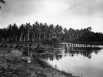 Men of US 2nd Marine Division wading through shallow water, Guadalcanal, Solomon Islands, Aug 1942