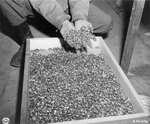 Rings left by Buchenwald concentration camp victims, 5 May 1945