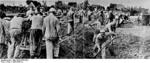Prisoners of Sachsenhausen concentration camp performing manual labor, Oranienburg, Germany, 1936, photo 2 of 2