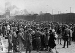 Carpatho-Ruthenian Jews being processed upon arrival at Auschwitz-Birkenau camp, Poland, May 1944