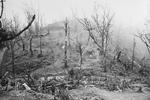 View of Garrison Hill after battle, near Kohima, India, Apr-May 1944