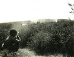 Japanese-American soldier of 100th Infantry Battalion, US 442nd Regimental Combat Team firing his M1 Garand rifle at a suspected German sniper position, Montenero area, Italy, 7 Aug 1944