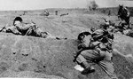 Killed US Marines on the beaches of Iwo Jima, Japan, Feb 1945