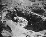 Pfc Reg P. Hester, 7th War Dog Platoon, 25th Regiment, United States Marine Corps took a nap while Dutch, his war dog, stood guard, Iwo Jima, Feb 1945
