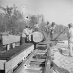 Men working at a saw mill, Jerome War Relocation Center, Arkansas, United States, 16 Nov 1942, photo 2 of 2