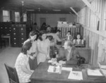 Placement Officer W. C. Love with his office staff, Jerome War Relocation Center, Arkansas, United States, 18 Nov 1942