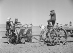 Japanese-American farmers operating a rotary potato planter, Tule Lake Relocation Center, Newell, California, United States, 1 Jul 1945, photo 2 of 2