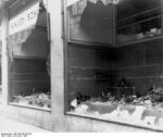 Destroyed Jewish shop in Magdeburg, Germany, 9 Nov 1938, photo 1 of 7