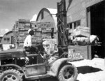 US Navy Seamen 1st Class M. D. Shore operating a forklift truck at a Navy supply depot at Guam, Mariana Islands, 8 Jun 1945
