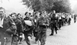 Captured British paratroopers being marched away by German troops, circa 17-25 Sep 1944