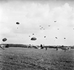 British paratroopers of 1st Airlanding Reconnaissance Squadron on the ground gathering their parachutes, Arnhem, Gelderland, the Netherlands, 17 Sep 1944