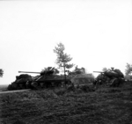 A Sherman Firefly tank of the UK Irish Guards Group advancing past Sherman tanks knocked out in previous actions, the Netherlands, 17 Sep 1944