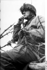 German paratrooper observing the field from a treetop position, Monte Cassino, Italy, 1943-1944, photo 1 of 2