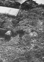 Killed Chinese boy near Nanjing, China, Dec 1937-early 1938; it was said that he was killed by rifle butt blow because he did not remove his hat before Japanese soldiers