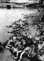 Dead Chinese piled on the shore of the Yangtze River, Nanjing, China, Dec 1937
