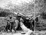 US Army African-American soldiers setting up a 155mm howitzer in France, 28 Jun 1944
