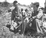 US Marines 1st Lieutenant Merril McLane and Corporal Howard Cox with stray dog Motobu on Okinawa, Japan, 1945