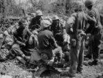 US Navy African-American construction batalion personnel acting as stretcher bearers for the US 7th Marine Regiment, Peleliu, Palau Islands, Sep 1944