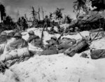 African-American US Marines resting during the campaign for Peleliu, Palau Islands, 15 Sep 1944