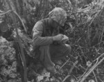 USMC war dog handler reading a message that his dog had just delivered, Peleliu, Palau Islands, Sep 1944