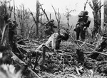 American soldiers advancing past a dead Japanese soldier near Balete Pass, Luzon, Philippine Islands, 12 Apr 1945