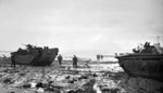LVT Buffalo amphibians during the invasion of Walcheren Island, the Netherlands, 1 Nov 1944