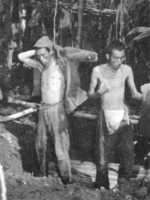 Two Japanese soldiers captured at Ilangana Peninsula, New Georgia, Solomon Islands, mid-1943