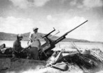 Men of Battery F, 70th Coast Artillery of the US Army manning a 37-mm anti-aircraft gun at Wickham Anchorage, New Georgia, Solomon Islands, 1943
